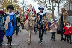 070fotograaf_20181124_Benoordenhout Sinterklaas_FVDL_Stadsfotografie_6533.jpg