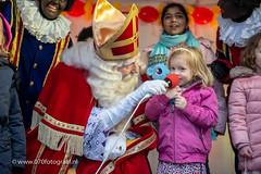 070fotograaf_20181124_Benoordenhout Sinterklaas_FVDL_Stadsfotografie_6821.jpg