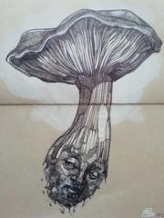 1_poisonous