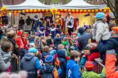 070fotograaf_20181124_Benoordenhout Sinterklaas_FVDL_Stadsfotografie_6999.jpg