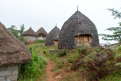 Dorze Lodge