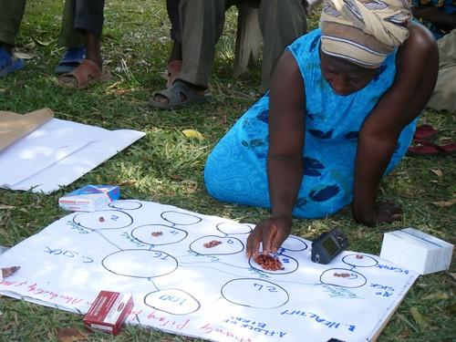 Uganda field work, Bugiri, proportional piling to assess morbidity and mortality
