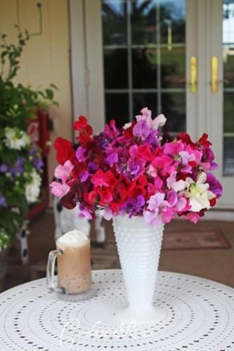Sweet Peas & Coffee