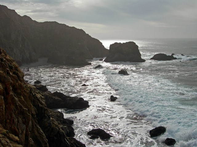 Sheer cliffs overlook inaccessible pocket beaches at Tomales Point.