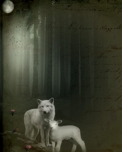 Le Loup et L'Agneau - The Wolf and the Lamb