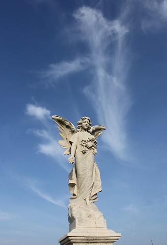 Waverley Angel III