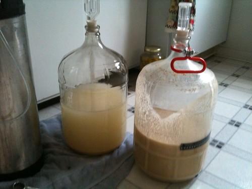 banana beer in fermenters