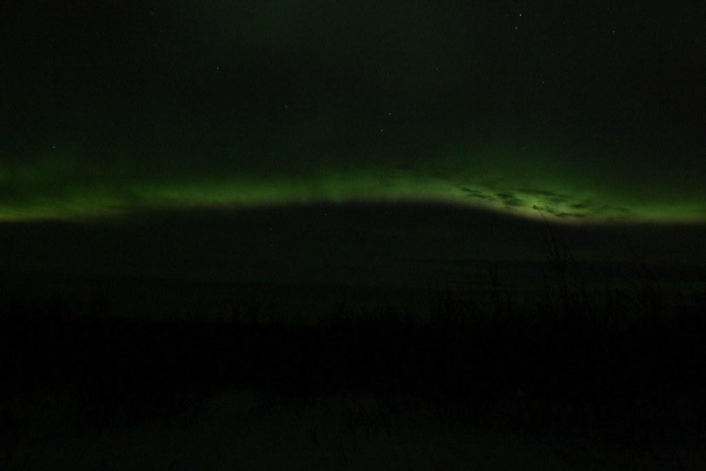 Aurora Long 1