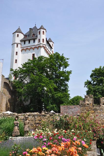 Rosenstadt Eltville