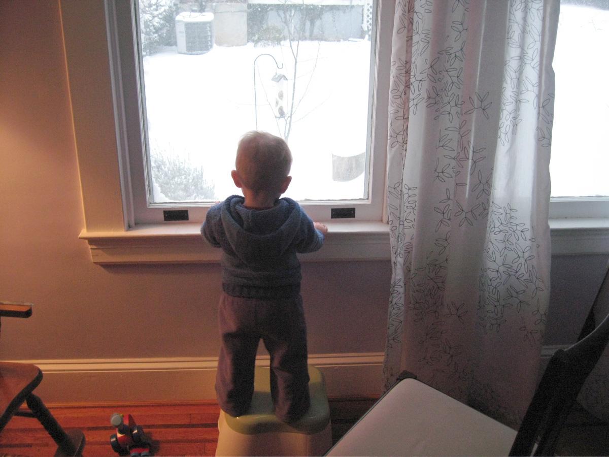 Watching the Snowfall