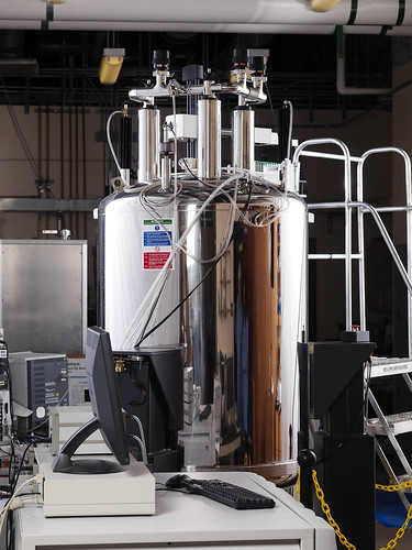 NMR, 600-MHz