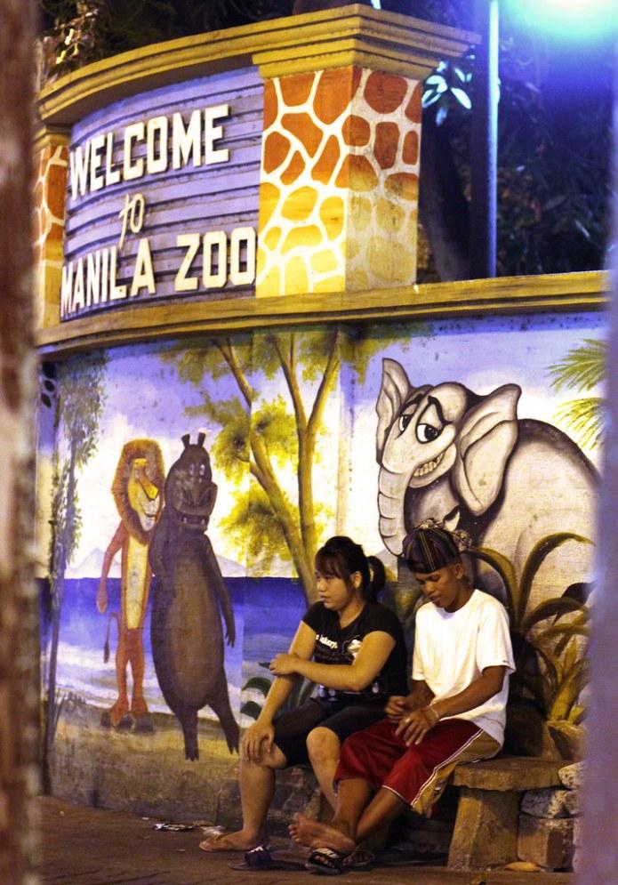 sitting outside manila zoo