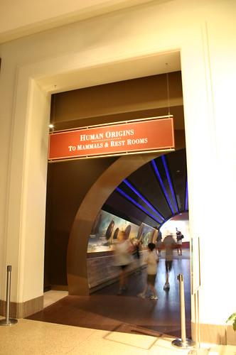 Hall of Human Origins Entrance