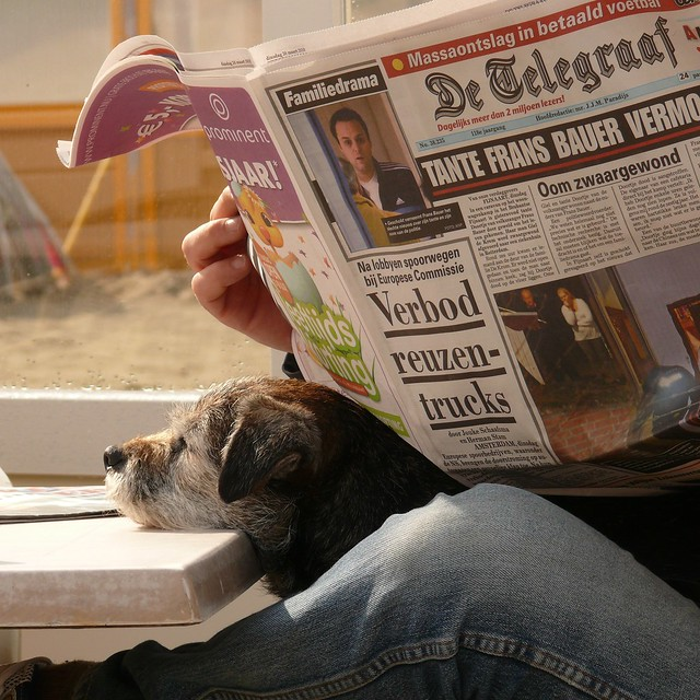 ignoring the newspaper