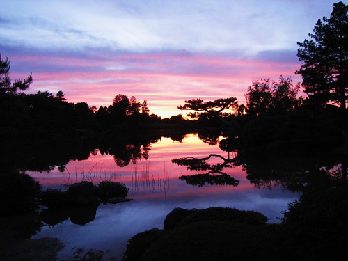 Sunset from the Japanese Garden III
