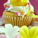 Duck & His  Little Cupcake  Friend