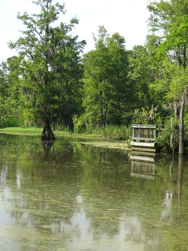 Old Santee Canal