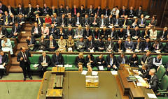 13. New Members of Parliament ask questions