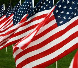 American flags by jayfherron