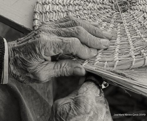 """Foto """"Fibras II"""" by José-María Moreno García = FOTÓGRAFO HUMANISTA - flickr"""