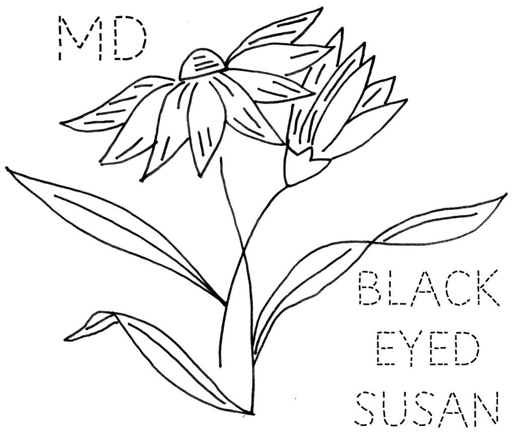 Maryland Black Eyed Susan Flickr