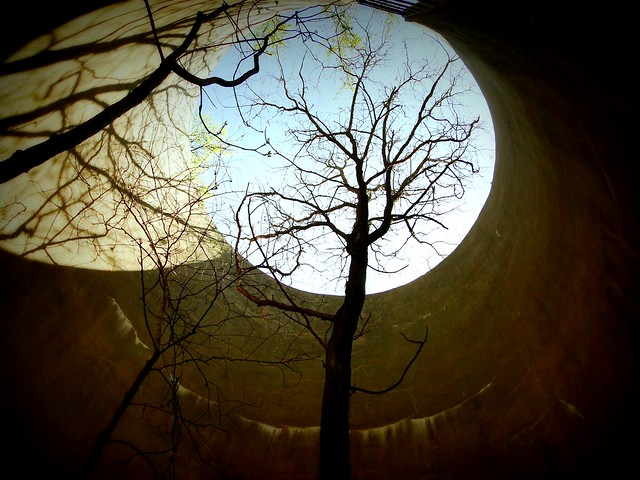 The tree in the silo