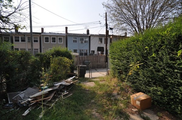 Pre-closing: backyard