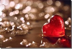 Heart - seyed mostafa zamani