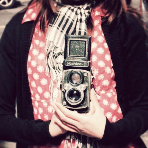 mr. yashica d*