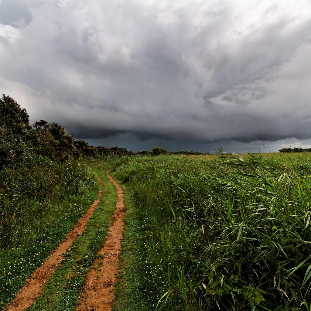 Storm and Sandy Lane, Berrow, Somerset