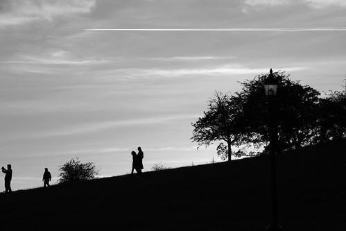 Primrose Hill Silhouettes #1