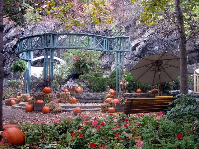 Pumpkin patch, Vieille ville de Québec