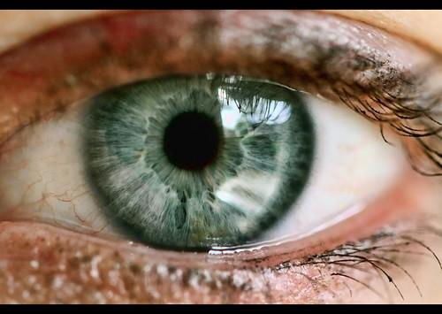 Eye Photography Tips Eye Macro Tips  Avidvisions