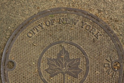 """City of New York"" drain cover"