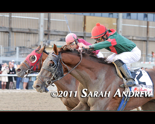 Wood You Believe? Toby's Corner Causes the Upset at Aqueduct