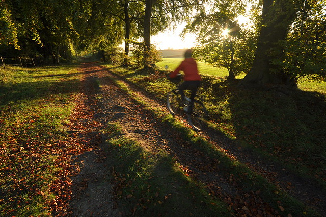 Off-road cycleway in England