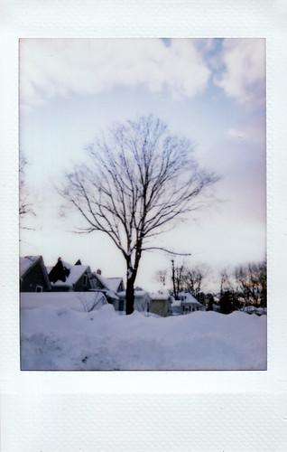Polaroid 300 Photo Walk - January 2011
