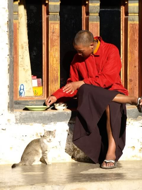 Monks from a Bumthang Valley Monastery at Tea Time