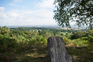 Leicestershire view