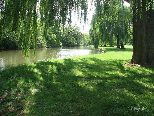 Baker Park Surrounds Carroll Creek