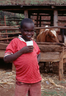 Kenyan boy drinking milk