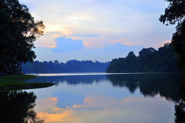MacRitchie Reservoir