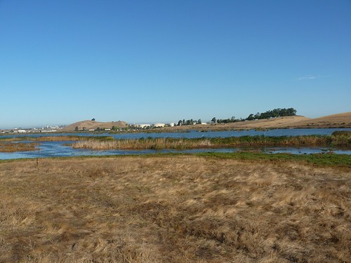 McNabney Marsh