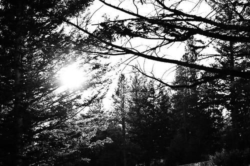20101001_Banff2_Jpg_001