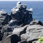 Viajefilos en La Espanola, Galapagos 041