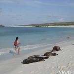Viajefilos en La Espanola, Galapagos 085