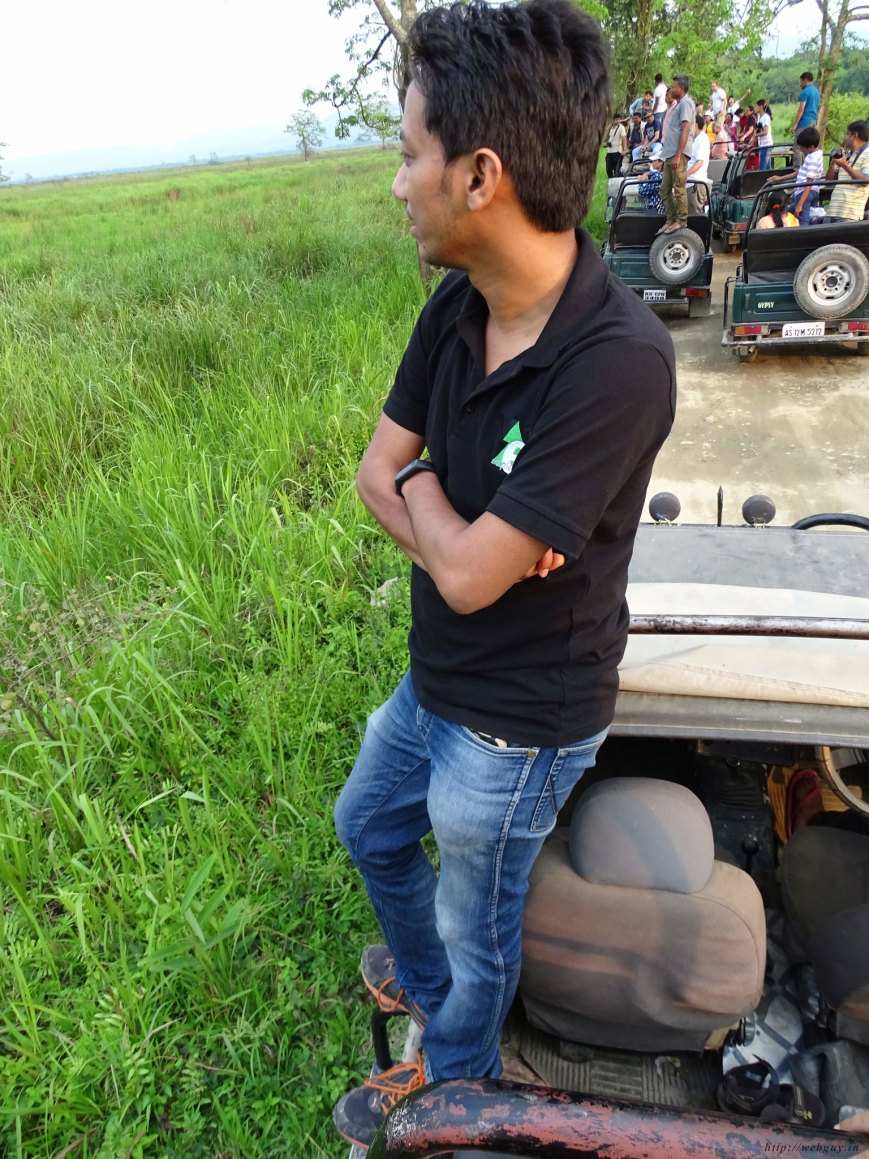 Looking for the Tiger, Kaziranga National Park