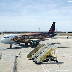 #flying back to #belgium with @flyingbrussels and the #tomorrowland #airplane #brusselsairlines #faro #brussels #beautiful #bird #travelphotography #travel #wanderlust #guardiantravelsnaps #vsco #vscocam #tarmac #airport #igtravel #igbelgium