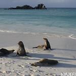 Viajefilos en La Espanola, Galapagos 095