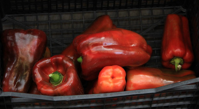 Spanish peppers on sale at Girona Food Market